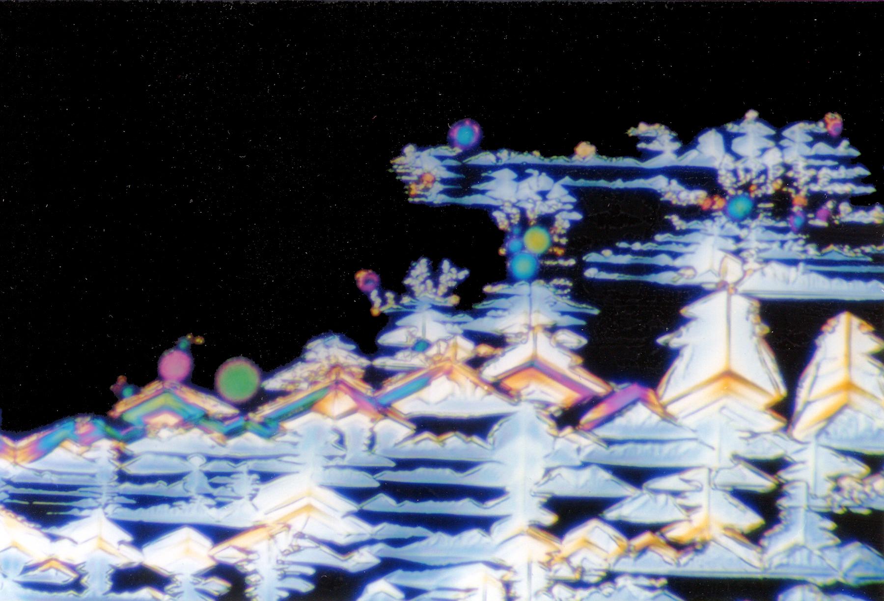 MVA 1995 Christmas Card
