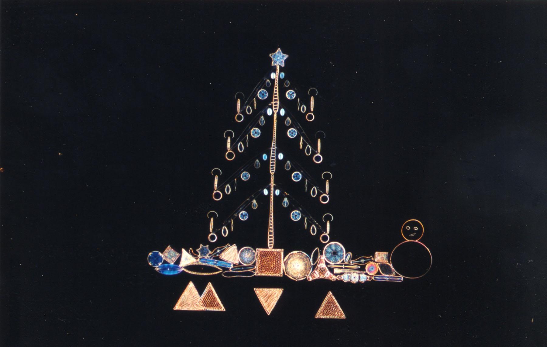 MVA 1998 Christmas Card