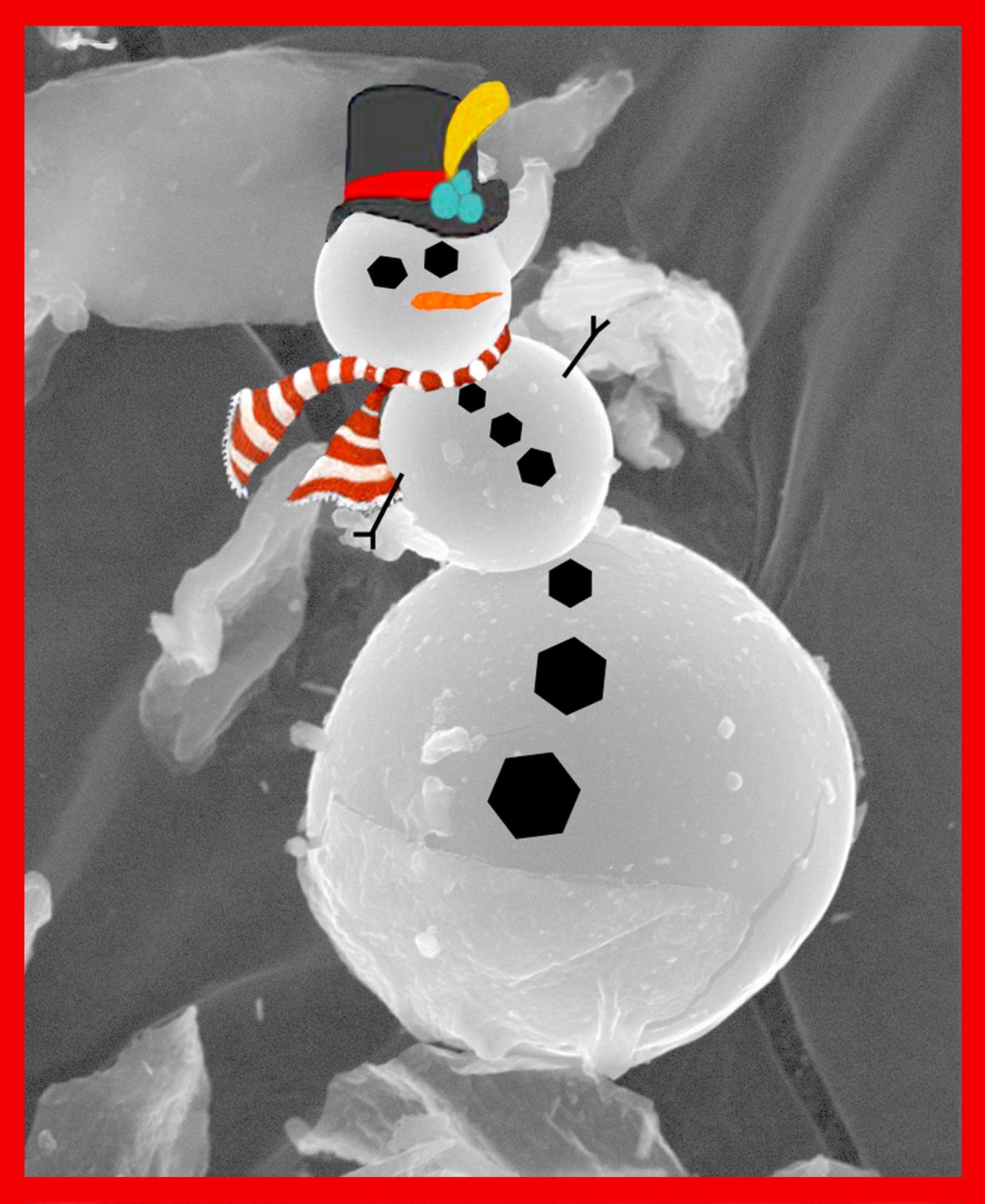 MVA 2008 Christmas Card