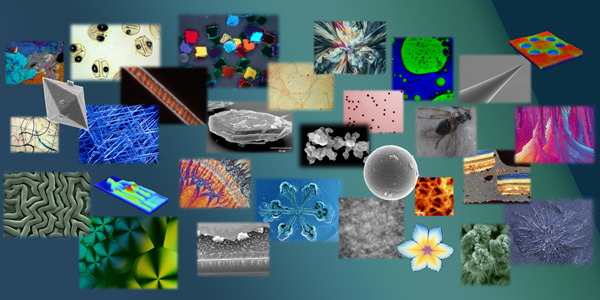 MVA Scientific Consultants Microscopy Image Gallery