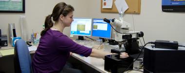 raman spectroscopy analysis