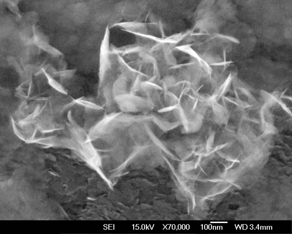 FE-SEM image of Mg(OH)2 nanoparticles