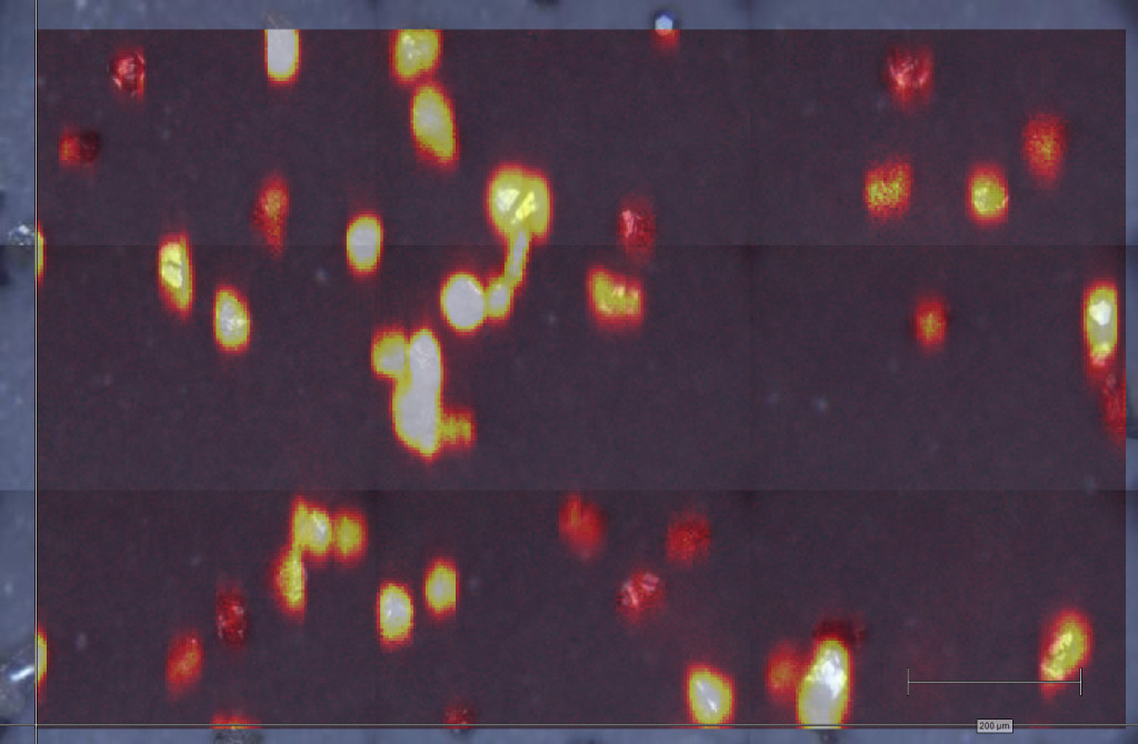 Raman imaging of diamond particles
