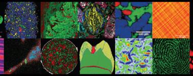 Raman Microscopy Workshop
