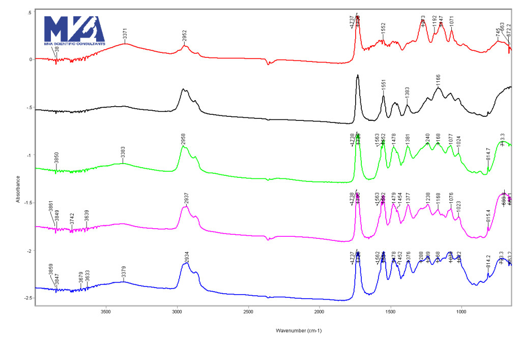 FTIR spectra of paint layers