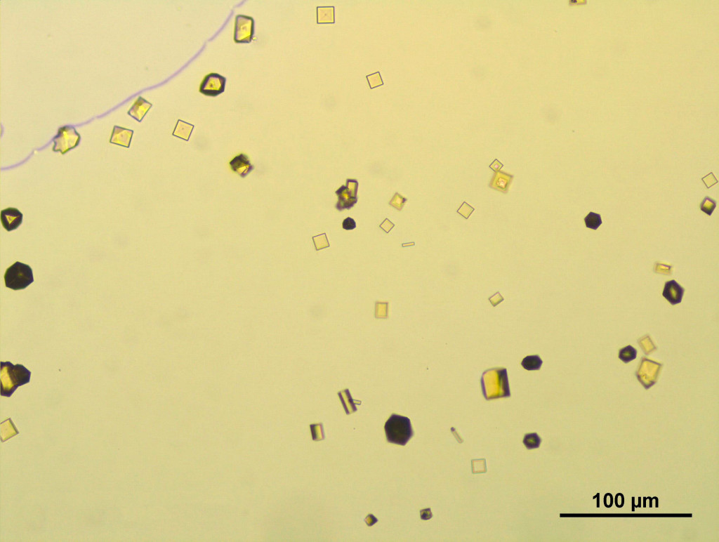 Light microscopy analysis of microcrystals
